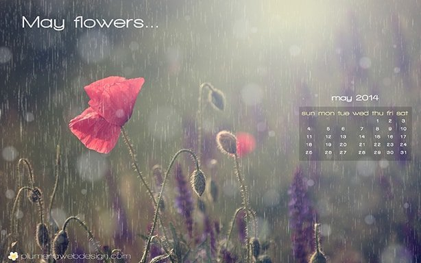 May 2014 Wallpaper Preview